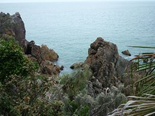 Overlooking the Coral Sea at Bustard Head, Joseph Banks Conservation Park